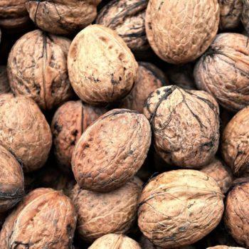 Грецкий орех Аврора-1